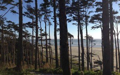 Seabrook a Olympijský poloostrov