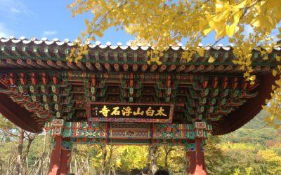 Seoul, mesto kde to žije 24 hodín denne.