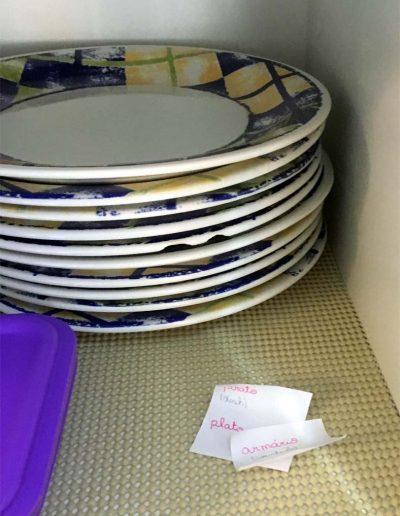 Prato - plate - plato