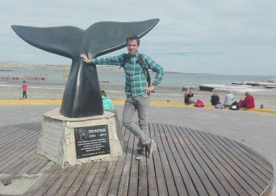 Výlet za veľrybami, ľadovcami a tučniakmi