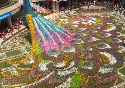 Výstava kvetov v jednom z nákupných centier