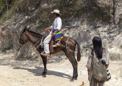 indián na koni