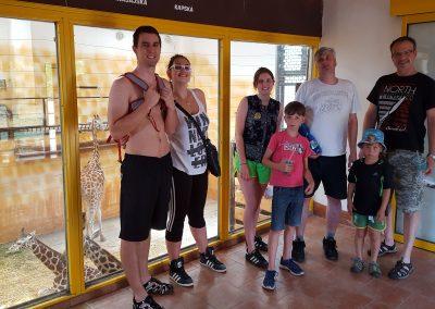 Olomoucká ZOO a Caseyny milované žirafy I