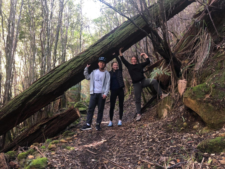Hobart – druhý domov?