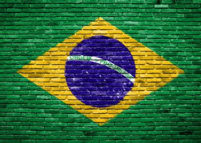 brazílie-vlajka