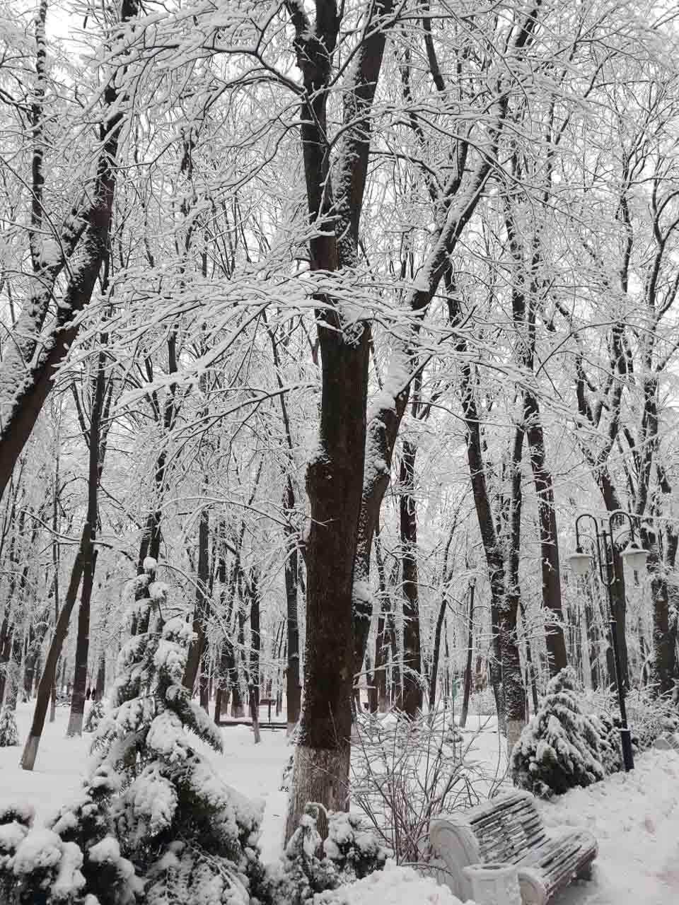 Zimný park v Starej Russi