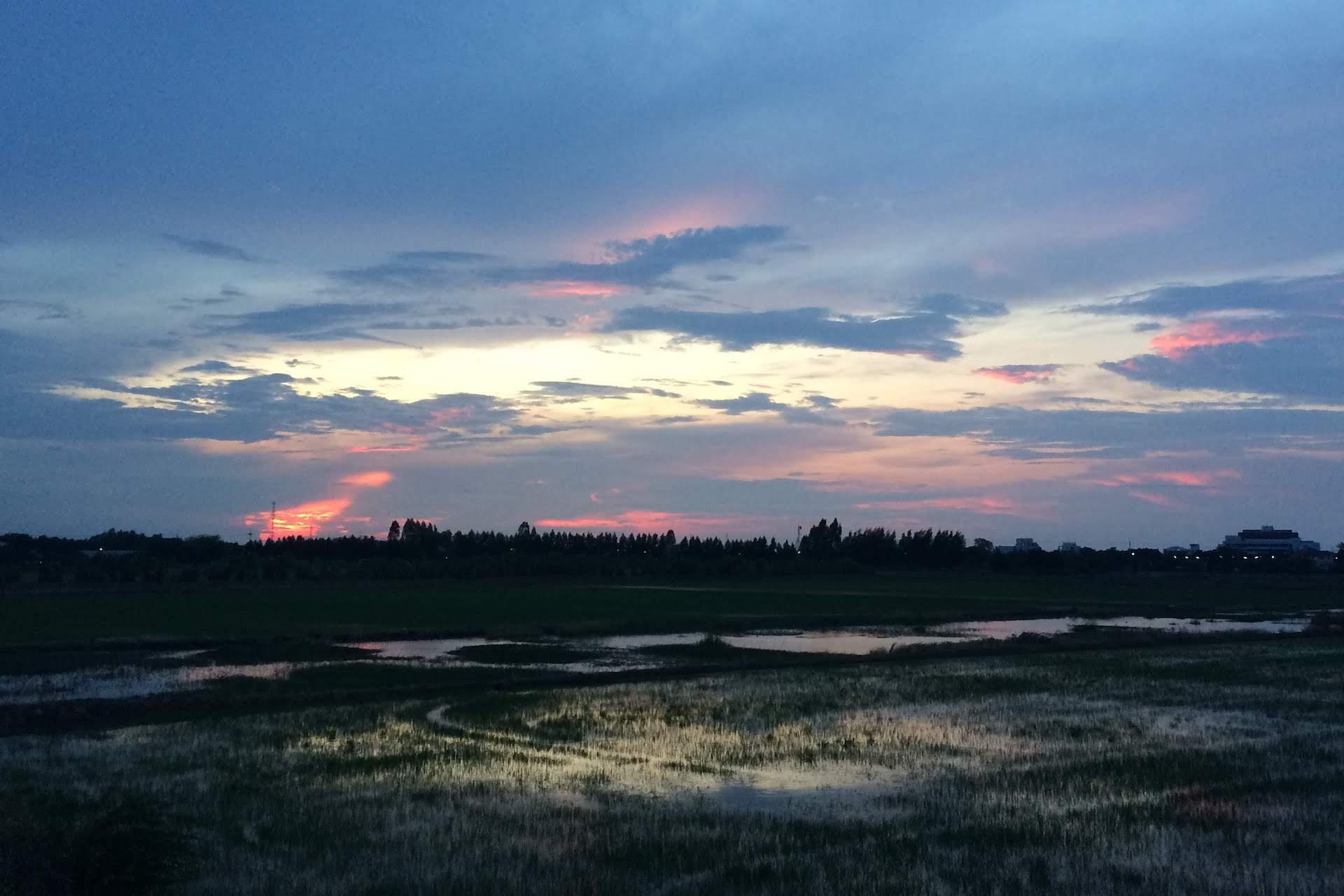 západ slunce nad rýžovými poli