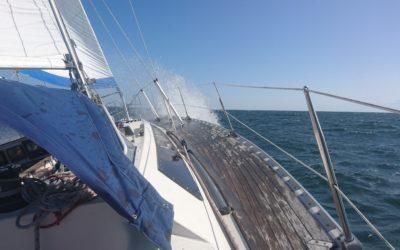 Sailing Camp Stockholm 2019