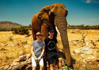 Prechádzka so slonmi