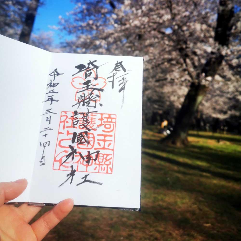お花見 (ohanami) - pozorování sakur